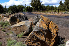 Volcanic boulders with lichen Stock Photography