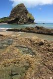 Volcanic cliffs at Piha beach Royalty Free Stock Image