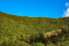 Volcanic crater with fluor green vegetation. Blue sky and volcanic crater with fluor green vegetation Stock Photography