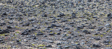 Volcanic desert wasteland Stock Images