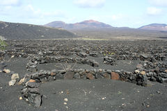 Volcanic field Stock Photos