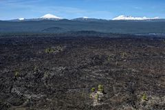 Volcanic field at Lava Butte near Bend and Sunriver. Newberry National Volcanic Monument. Trees grow on magma fields after eruption.  Oregon. United States of Stock Images