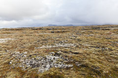 Volcanic field at the Snaefellsnes peninsula. Stock Images
