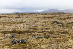 Volcanic field at the Snaefellsnes peninsula with mountains at t. He back, Iceland Royalty Free Stock Photos