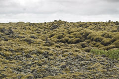 Volcanic flow in Laki (Iceland) Royalty Free Stock Image