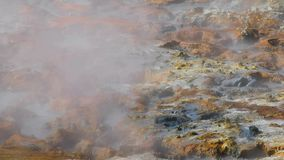 Volcanic hot mud pool. In Seltun, Iceland, steam rising stock video footage