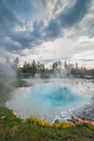Volcanic Hot Spring on Fountain Paint Pot Nature Trail with Hot Blue Water and Wildflowers  During Sunset in Yellowstone Stock Photos