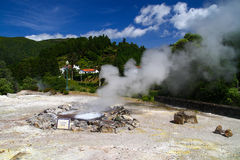 Volcanic hot spring in Furnas Royalty Free Stock Images