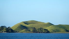 Browns Island of the City of Auckland, New Zealand. Volcanic island Motukorea from ferry in the Hauraki Gulf next to Auckland the largest city of the North stock images