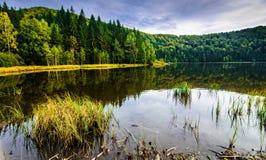 Volcanic lake in Romania stock photos