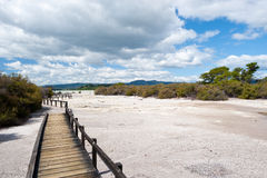 Volcanic Lake Rotorua -  New Zealand. Stock Images