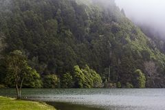 Volcanic Lake surrounded by forest and fog royalty free stock image