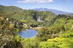 Volcanic lake at waimangu Stock Photography