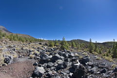 Volcanic landscape. In El Teide, Tenerife Royalty Free Stock Photography