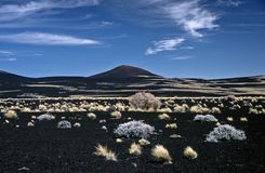 Volcanic Landscape in Argentina,Argentina Stock Images