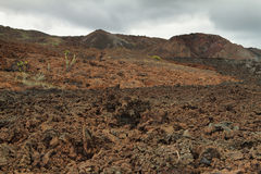 Volcanic landscape around Volcano Sierra Negra Stock Photo