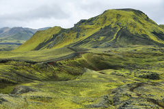 Volcanic landscape covered with moss Royalty Free Stock Photo