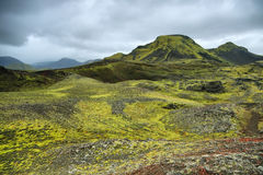 Volcanic landscape covered with moss Royalty Free Stock Image