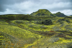 Volcanic landscape covered with moss Stock Photography