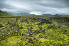 Volcanic landscape covered with moss Stock Photos