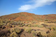 Volcanic landscape, El Teide. Royalty Free Stock Photos