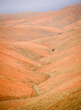Volcanic landscape of Fuerteventura interior Royalty Free Stock Photos