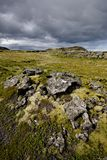Volcanic landscape in Iceland. Lava covered with moss Royalty Free Stock Image