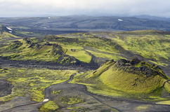Volcanic landscape of Iceland. A black rock volcano covered with typical Green vegetation of Iceland Stock Photo