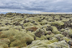Volcanic landscape, Iceland Stock Photography