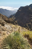 Volcanic landscape in La Palma. Caldera de Taburiente. Spain Stock Photos