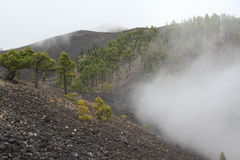 Volcanic landscape on La Palma, Canary Islands Royalty Free Stock Photography