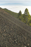 Volcanic landscape in La Palma. Canary Islands. Spain Stock Photos