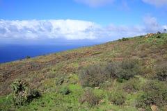 Volcanic landscape on La Palma Island, Spain Royalty Free Stock Image