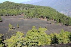 Volcanic landscape on La Palma Island, Spain Stock Images