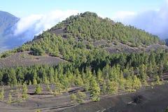 Volcanic landscape on La Palma Island, Spain Royalty Free Stock Photos