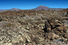 Volcanic landscape at Lanzarote Island, Canary Islands, Spain Royalty Free Stock Photo