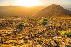 Volcanic landscape on Lanzarote island Royalty Free Stock Photography
