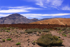 Volcanic  landscape  near volcano Teide with blue  Stock Photography