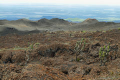 Volcanic landscape, Sierra Negra, Galapagos. Stock Photos