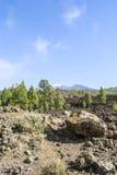 Volcanic Landscape. Teide Nationalpark - bright daylight - no people Stock Photography