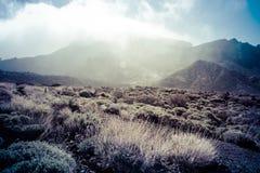 Volcanic landscape, Teide, Tenerife Royalty Free Stock Image