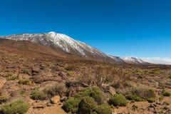 Volcanic landscape, Teide, Tenerife Stock Photos