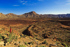Volcanic landscape of the Teide Volcano National Park Royalty Free Stock Photography