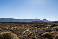 Volcanic Landscape (Tenerife, Canaries, Spain) Stock Photos