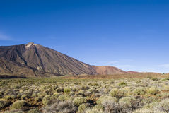 Volcanic Landscape (Tenerife, Canaries, Spain) Stock Image