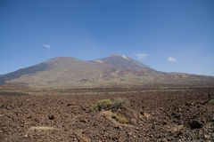 Volcanic landscape on Tenerife Royalty Free Stock Images