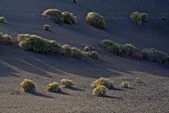 Volcanic landscape in the Timanfaya National Park Stock Photo