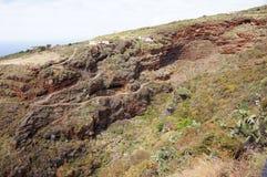 Volcanic landscape, typical houses, wild vegetation stock photo