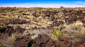 Volcanic Landscape at Valley of Fires Recreation Area in New Mex Stock Photos