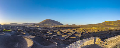 Volcanic landscape with vinery at La Geria. In Lanzarote Stock Image